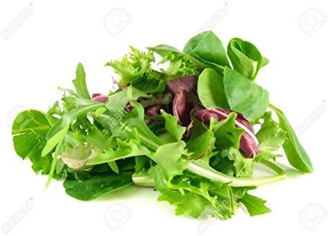 Honest Greens Lettuce Mix 100G