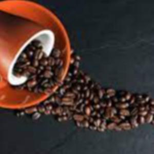 Augusta Coffee Beans 1kg